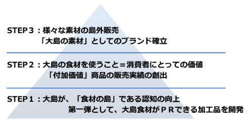 戦略立案―大島町